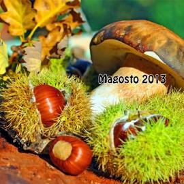 Magosto 2013