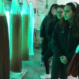 Visita de 4ºESO o Instituto de Investigacións Mariñas