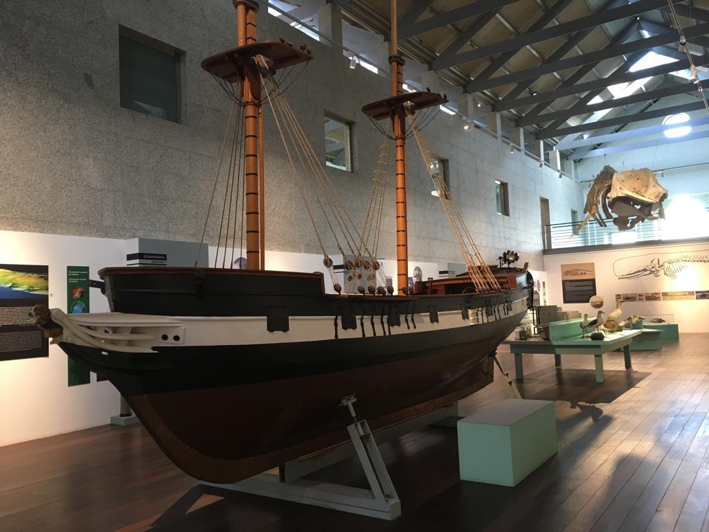 Museo do Mar 5P e 6P